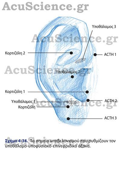 Acuscience.gr Ωτοβελονισμός