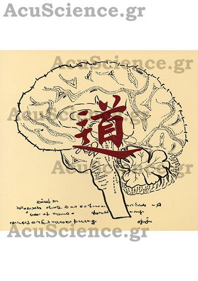 Βελονισμός και Εγκέφαλος Acuscience.gr