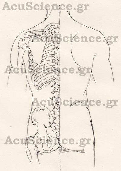 Βελονισμός Acuscience.gr