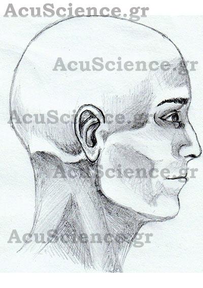 ΑCU SCIENCE Βελονισμός Κεφάλι