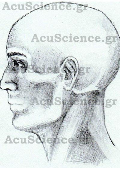 ΑCU SCIENCE Βελονισμός στο Κεφάλι